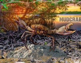 Nro 17 kilpailuun Australian Mud Crab käyttäjältä vibersol