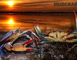 Nro 67 kilpailuun Australian Mud Crab käyttäjältä dulhanindi