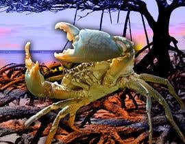 Nro 31 kilpailuun Australian Mud Crab käyttäjältä zonicdesign