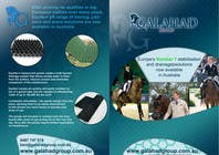 Graphic Design Contest Entry #21 for Brochure Design for Galahad Group Pty Ltd