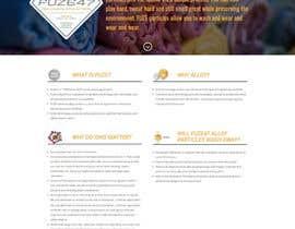 #6 для Complete website build on a new wordpress template. від richardginn