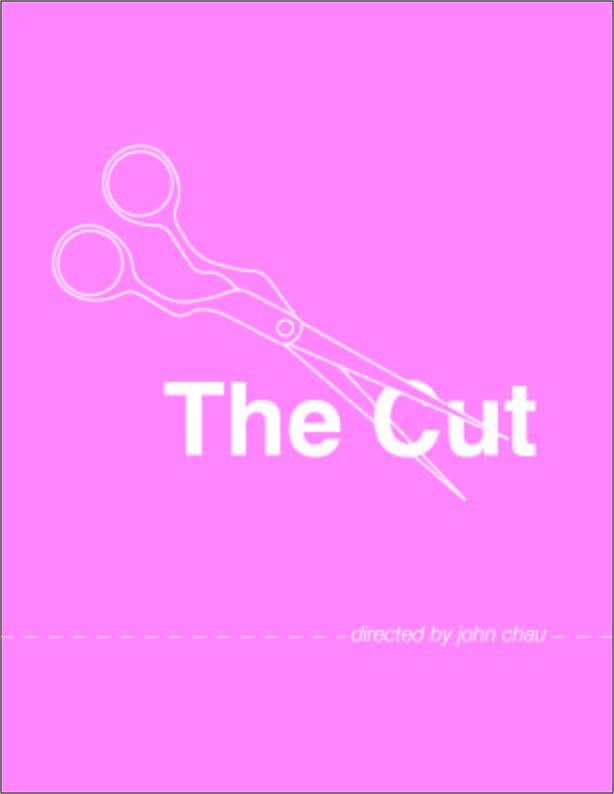 """Proposition n°1 du concours Design a movie poster for a documentary called """"the cut"""""""