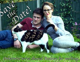 brucepagunsan tarafından Wedding invite photo with date shaved into the cat's fur - very unique brief! için no 68