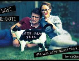 adamadia tarafından Wedding invite photo with date shaved into the cat's fur - very unique brief! için no 71