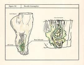 Nro 6 kilpailuun Illustrate Figure for Scientific Paper käyttäjältä labtop08