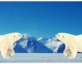 Nro 4 kilpailuun Draw some Polar Bears! käyttäjältä digosbrito