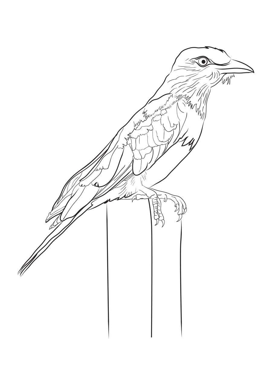Contest entry 32 for convert images to line drawings sketches in 300 dpi
