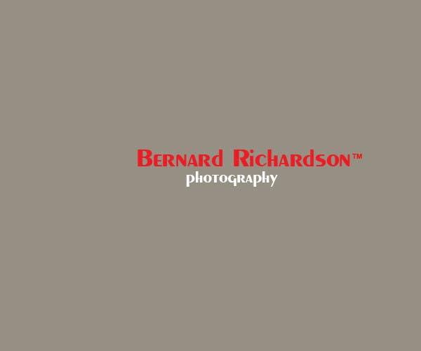 Bài tham dự cuộc thi #267 cho Logo Design for Bernard Richardson Photography