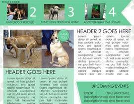 #11 untuk Newsletter Template for Animal Rescue developed in Illustrator oleh ryucalderon94