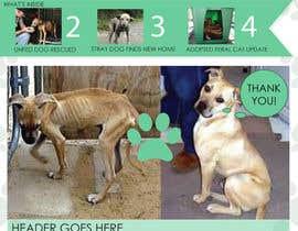 #12 untuk Newsletter Template for Animal Rescue developed in Illustrator oleh ryucalderon94
