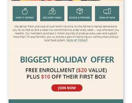 nº 33 pour Holiday Email Campaign par RainbowVivid