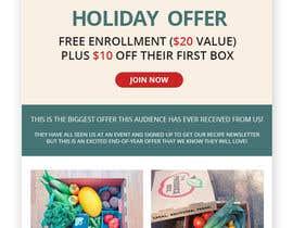 nº 41 pour Holiday Email Campaign par RainbowVivid