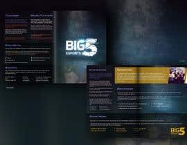 #1 για Design a Brochure For A Esports Organization από DianaE