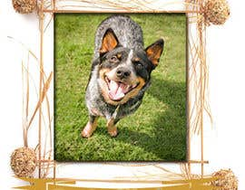 #24 cho Pet Photo Book Cover bởi George0901