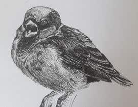 #2 for Book illustrations af elenaburlacu
