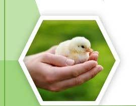 #10 for ebook design voor egg hatch guide by elviragomori