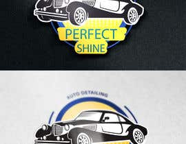 #41 dla logo for car shading and ceramic tint przez anikgd