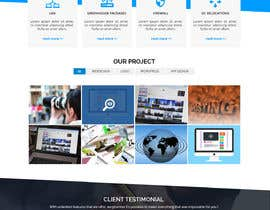 #20 for Website content development for a new consulting business by WebCraft111