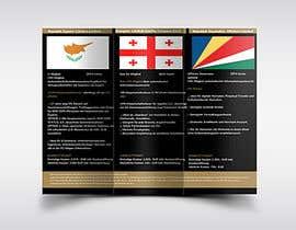 #40 for Design a Flyer by karenediabre