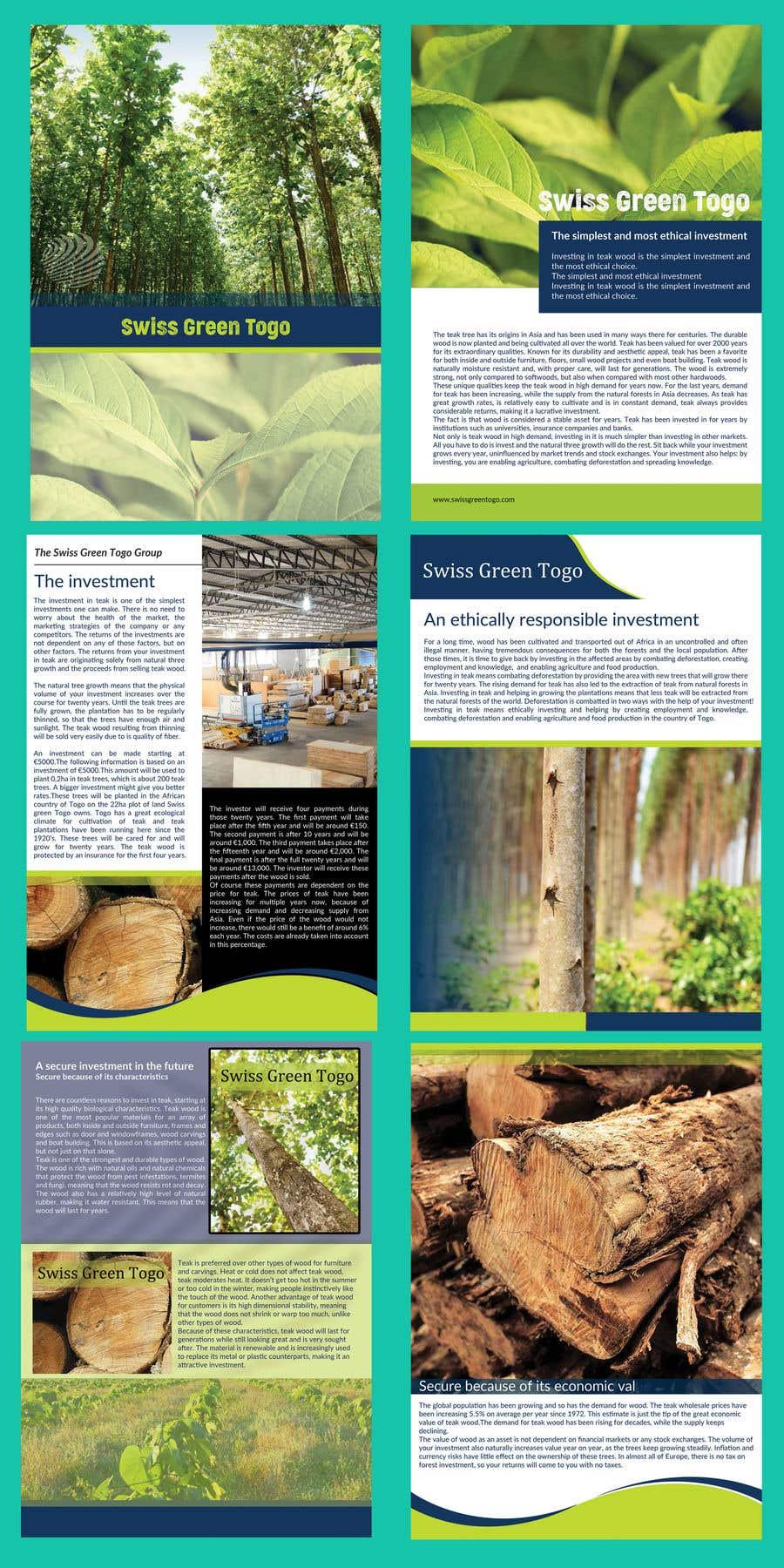 Entry #41 by lipiakhatun8 for Design a Brochure | Freelancer