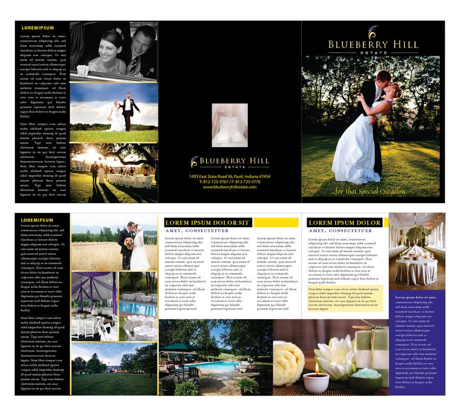 Konkurrenceindlæg #                                        42                                      for                                         Graphic Design for MARKETING BROCHURE -Blueberry Hill Estate- Wedding Specific -Media Kit for print