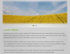 #24 для One page Brochure Site Design от linike