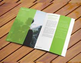 "#15 for Design a Full Page PDF Brochure ""white paper"" (Adobe InDesign) af ElegantConcept77"