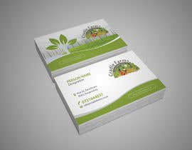 #13 for Design a Brochure & Business card by AchiverDesigner