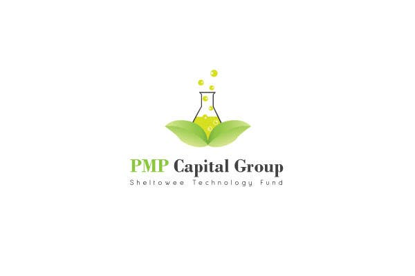Proposition n°                                        46                                      du concours                                         Logo Design for PMP Capital Group, L.P.