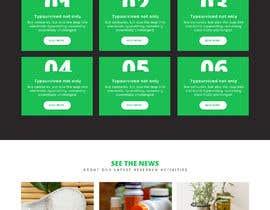 #13 pentru Design a website de către saidesigner87