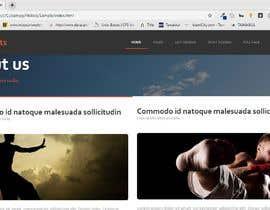 #16 za landing page : HTML + pureCSS (no jQuery) od usama388