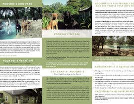 #43 for New Brochure with our New Logo! by mayhidalgo