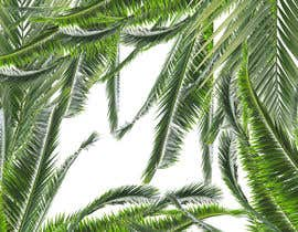 #72 para Design a palm tree/banana leaf pattern I can use for my product por Aroozitalab1987