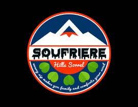 #65 untuk Need a logo for a company beverage oleh MAdall0077