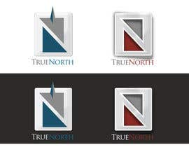 #4 cho Logo Design for True North Scientific bởi niccroadniccroad