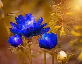 #4 untuk CREATE A GALAXY FLOWER PATTERN oleh retouchmaster01