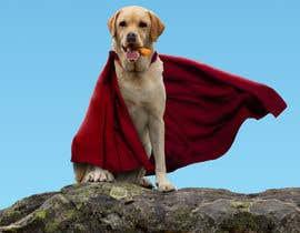 #8 для Picture of a 'super' dog eating от b3ast61