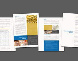 nº 23 pour Brochure Design for company par Decafe