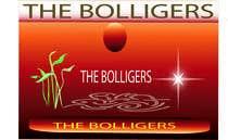 Bài tham dự #13 về Graphic Design cho cuộc thi fruits, nuts and honey wine logo the bolligers