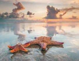 #392 for Design a photo of a star fish by nasro31