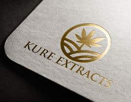 #12 untuk kure extracts oleh mhprantu204