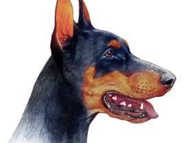 caloylvr tarafından Draw a Dobermann Pinscher with a Muzzle için no 14