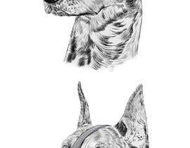 #19 untuk Draw a Dobermann Pinscher with a Muzzle oleh parthamikh