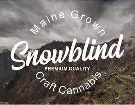 #80 for Design a Logo for Snowblind by Bros03