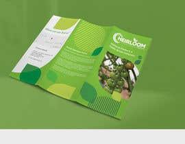 piashm3085 tarafından Design a brochure için no 17