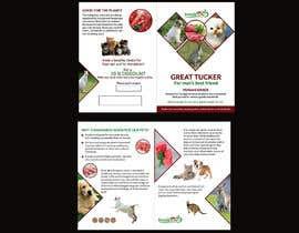#59 pentru Create a brochure de către amasuma412