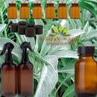 Bài tham dự #113 về Graphic Design cho cuộc thi Design a Logo for Herb Inspired Product