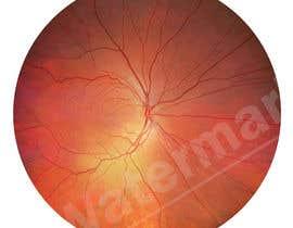 #11 для Iris Eye Design от amirhossainmeraj