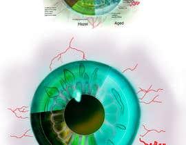 #17 для Iris Eye Design от manjiribhave