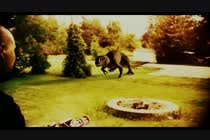 Film - Cinema -  Add monster FX to this short video için Video Services16 No.lu Yarışma Girdisi